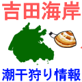 吉田海岸の潮干狩り情報を紹介するイラスト