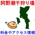 阿野潮干狩り場の潮干狩り情報を紹介するイラスト