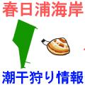 春日浦海岸の潮干狩り情報を紹介するイラスト