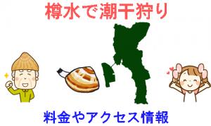 愛知県の樽水の潮干狩り情報を紹介するイラスト