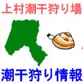 上村潮干狩り場の潮干狩り情報を紹介するイラスト