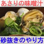 あさりの味噌汁の砂抜きのやり方を紹介するイメージ画像